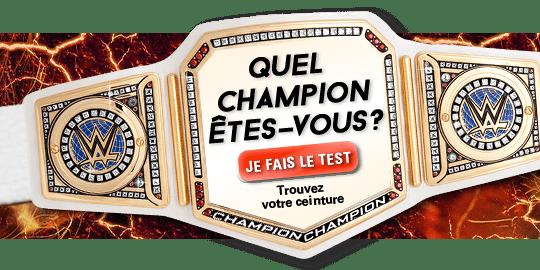 Quel champion êtes-vous ? Je fais le test. Trouvez votre ceinture.